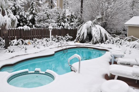 piscine en hiver